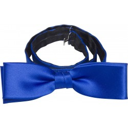 Nœud papillon bleu Cobalt
